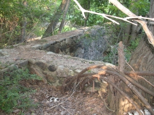 Ruins of the Redard Estate in Harriman: The Foundation I